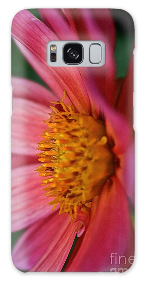 Floral Galaxy S8 Case featuring the photograph Dahlia Candles by Susan Herber