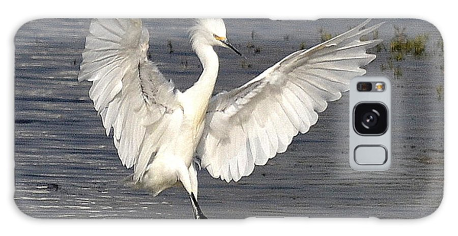 Snowy Egret Galaxy S8 Case featuring the photograph Dancer On The Water by Fraida Gutovich