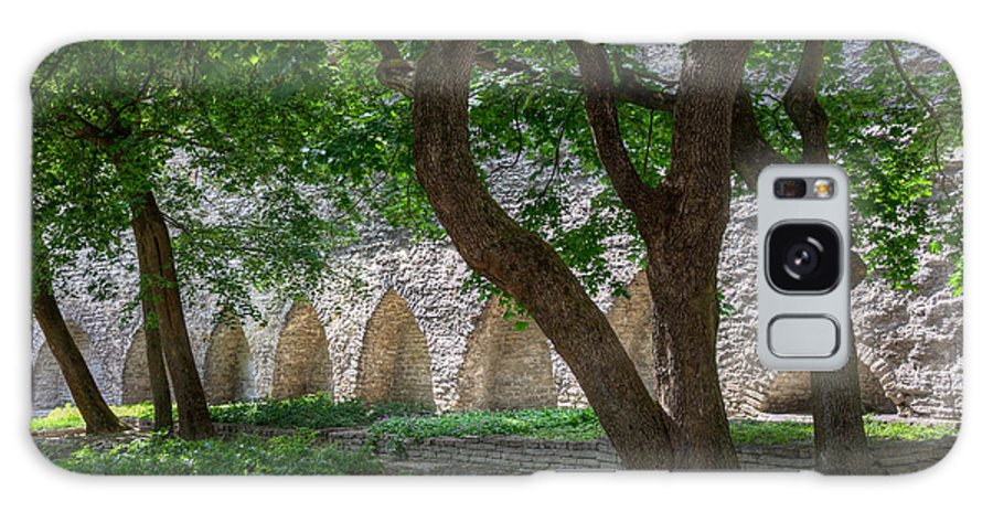 Danish King's Garden Galaxy S8 Case featuring the photograph Danish King's Garden Tallinn by Clare Bambers