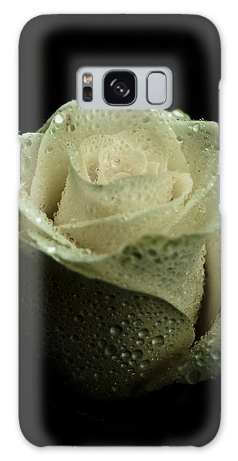Rose Galaxy S8 Case featuring the photograph Dark Rose by Grebo Gray