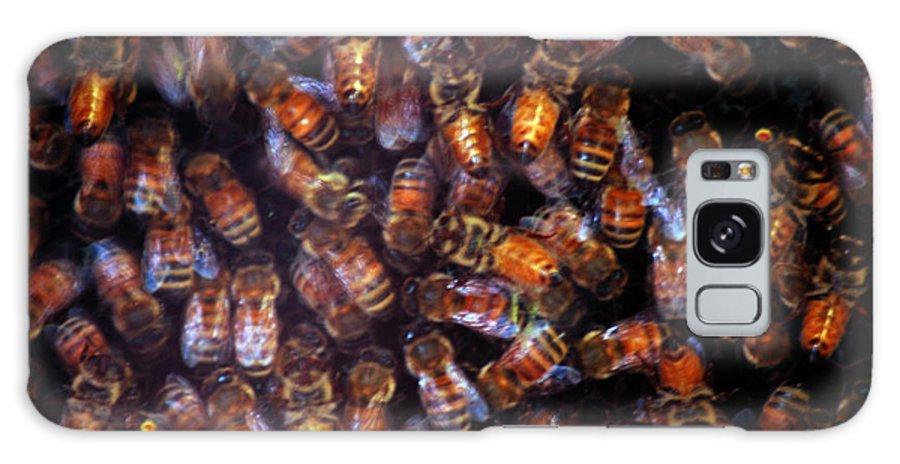 Usa Galaxy S8 Case featuring the photograph Dark Swarm Attack by LeeAnn McLaneGoetz McLaneGoetzStudioLLCcom