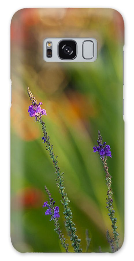 Flower Galaxy S8 Case featuring the photograph Delicate And Vivid by Mike Reid
