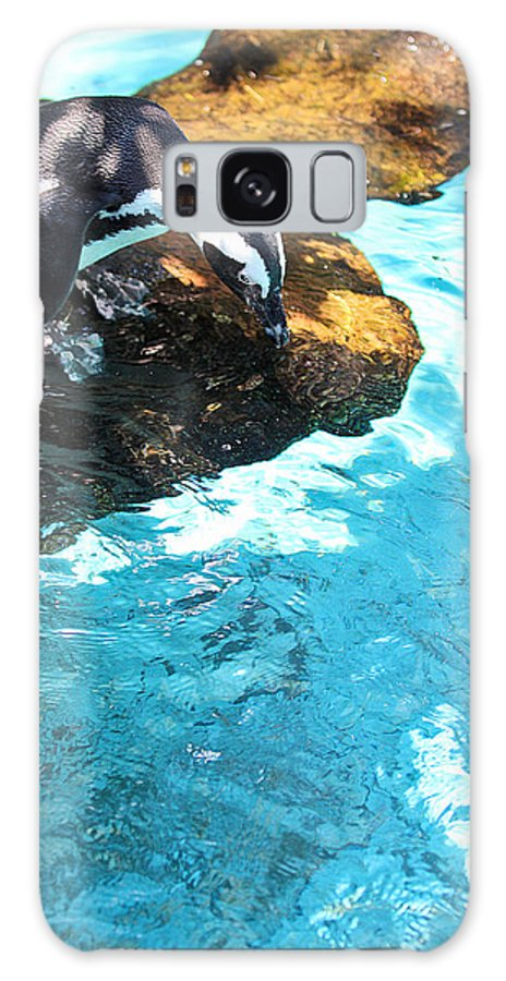Penguin Galaxy S8 Case featuring the photograph Dive by Elizabeth Hart