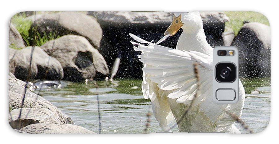 Usa Galaxy S8 Case featuring the photograph Doin The Duck Splash by LeeAnn McLaneGoetz McLaneGoetzStudioLLCcom