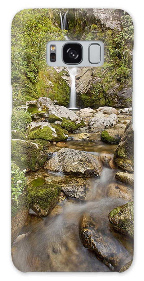 00439763 Galaxy S8 Case featuring the photograph Dorothy Falls Near Lake Kaniere New by Colin Monteath