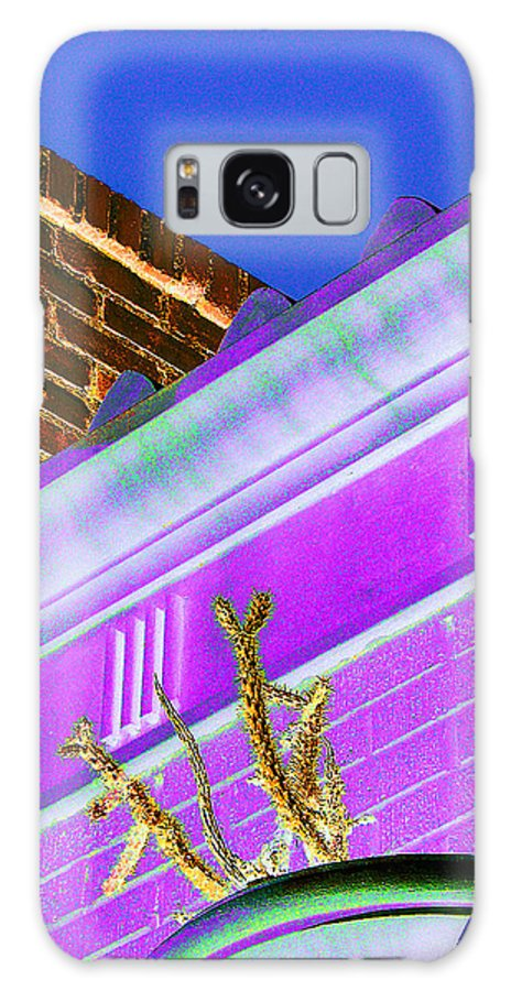 Cactus Galaxy S8 Case featuring the photograph Downtown Cholla I by Louis Nugent