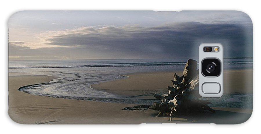 Wood Galaxy S8 Case featuring the photograph Driftwood And Tidal Pools, Victoria by Sam Abell