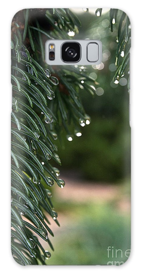 Outdoors Galaxy S8 Case featuring the photograph Drip Dry by Susan Herber