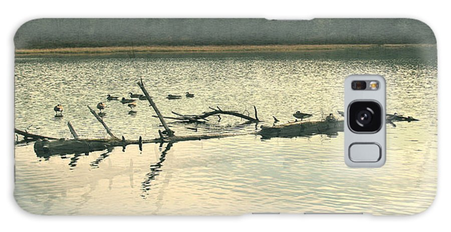 Ducks On The Lake Galaxy S8 Case featuring the photograph Ducky Of A Spring by Debra   Vatalaro