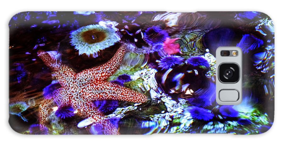 Aquarium Galaxy S8 Case featuring the photograph Emerged Starfish by Xueling Zou