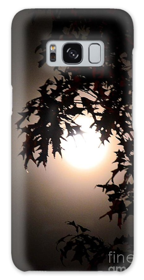 Enchanted By Moonlight Galaxy S8 Case featuring the photograph Enchanted By Moonlight by Maria Urso