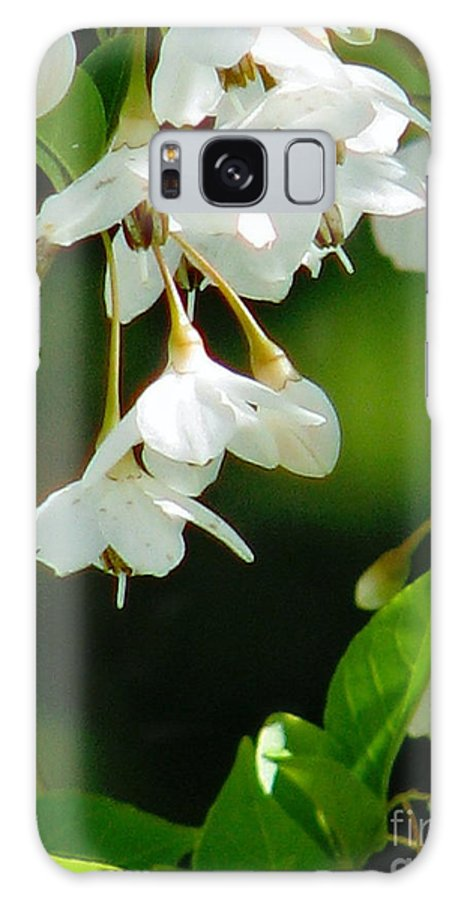 Flowers Galaxy S8 Case featuring the photograph Faerie Bells 2 by Rory Sagner