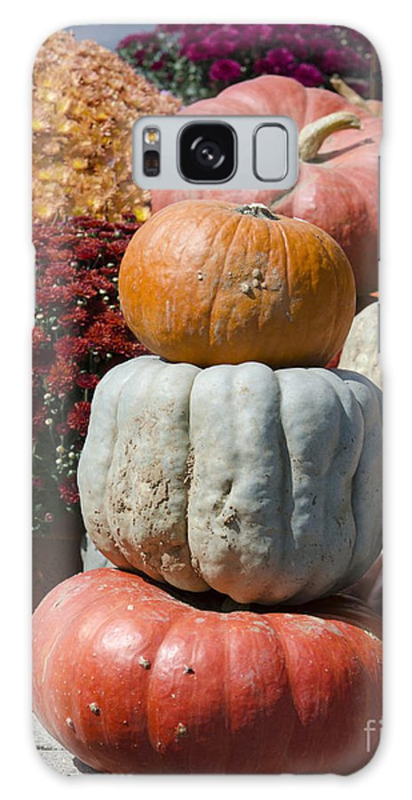 Galaxy S8 Case featuring the photograph Fall Harvest Colorful Gourds 7968 by Terri Winkler
