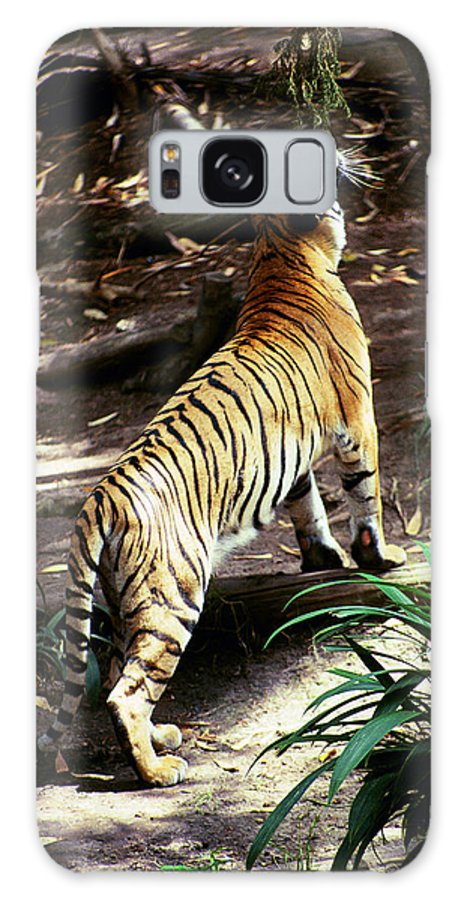 Galaxy S8 Case featuring the photograph Feeding Time by Michael Frank Jr