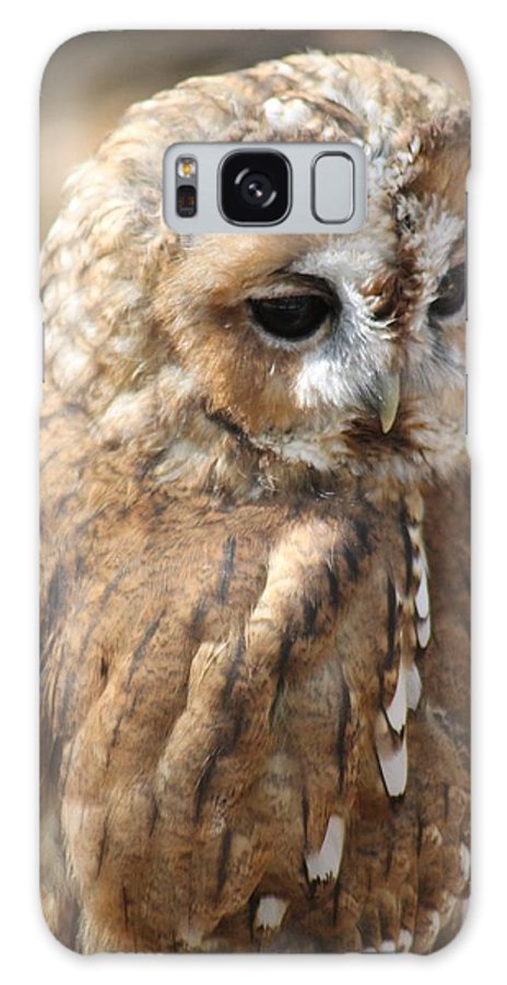 Owl Galaxy S8 Case featuring the photograph Feeling Sad by Rebecca Frank