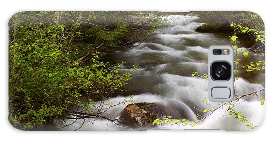 Landscape Galaxy S8 Case featuring the photograph Fern Creek Horizontal by Amanda Kiplinger