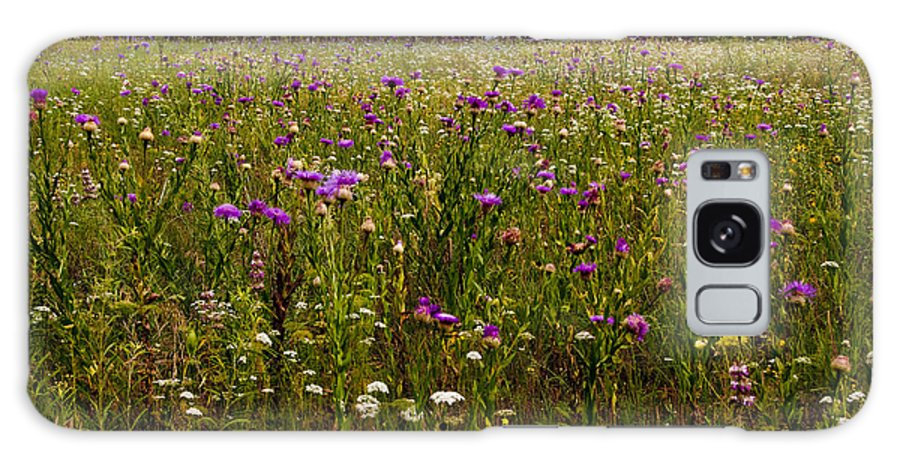 Flowers Galaxy S8 Case featuring the photograph Field Of Thistles by Tamyra Ayles