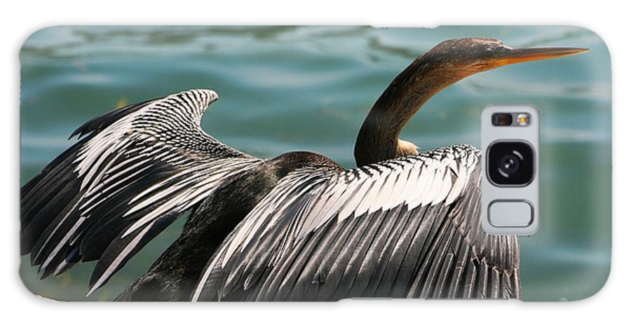 Bird Galaxy S8 Case featuring the photograph Flight Coordinator by Phil Cappiali Jr