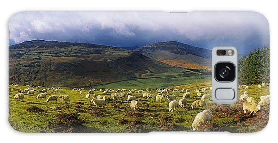 Co Wicklow Galaxy S8 Case featuring the photograph Flock Of Sheep Grazing In A Field by The Irish Image Collection