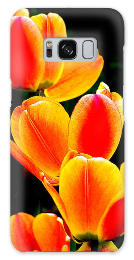 Galaxy S8 Case featuring the photograph Flower 20 by Burney Lieberman
