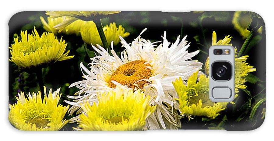 Galaxy S8 Case featuring the photograph Flower 21 by Burney Lieberman