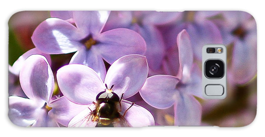 Fly In The Lilacs Galaxy S8 Case featuring the photograph Fly In The Lilacs by Mitch Shindelbower