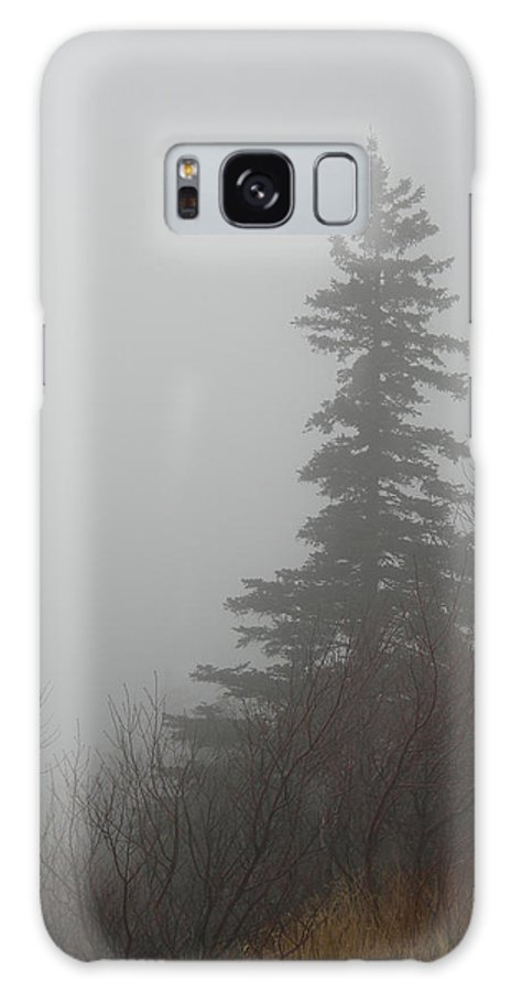 Maine Galaxy S8 Case featuring the photograph Foggy Sentinel by Skip Willits
