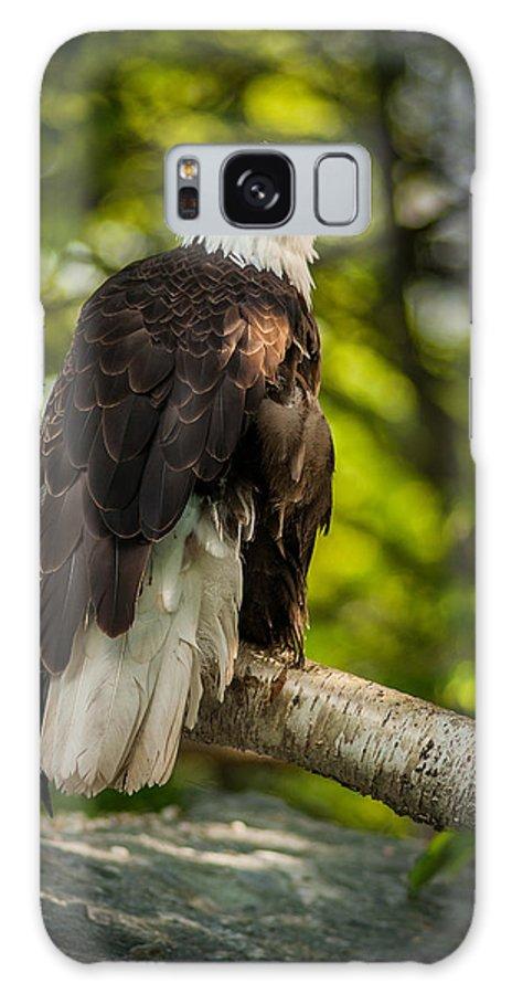 Portrait Galaxy S8 Case featuring the photograph Freedom by Joye Ardyn Durham
