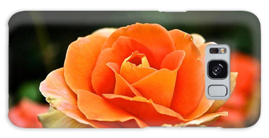 Garden Galaxy S8 Case featuring the photograph Fresh Peach Petals by Susan Herber