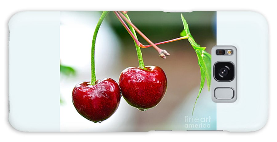 Photography Galaxy S8 Case featuring the photograph Fresh Wet Cherries by Kaye Menner