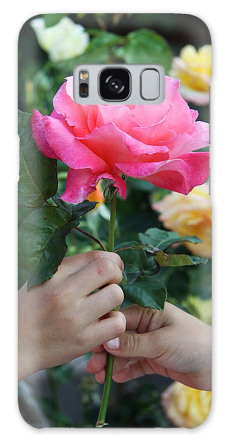Child Galaxy S8 Case featuring the photograph Friendship Rose by Diana Haronis