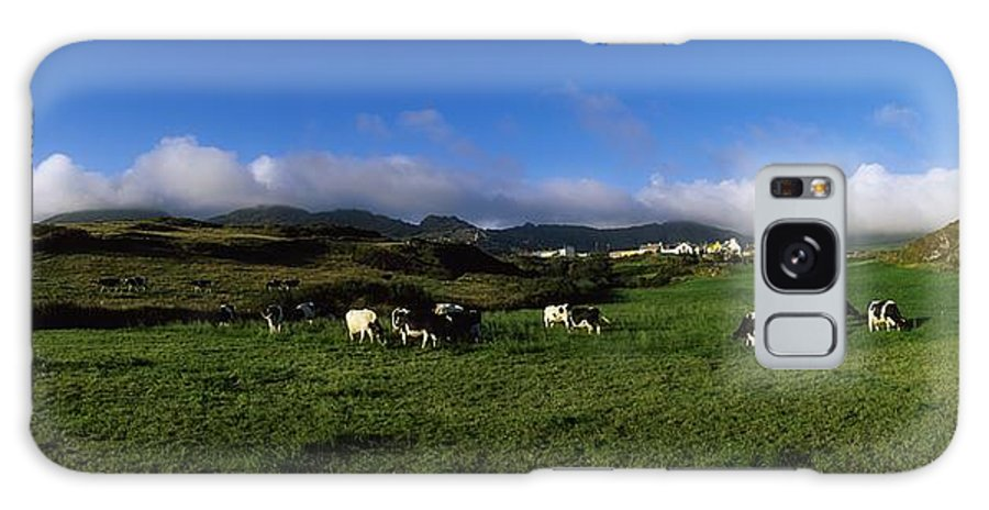 Animals Galaxy S8 Case featuring the photograph Friesian Cattle, Allihies, Co Cork by The Irish Image Collection