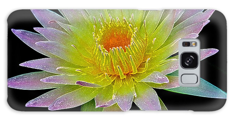 Flowers Galaxy S8 Case featuring the photograph Frosted Lily by Steve McKinzie