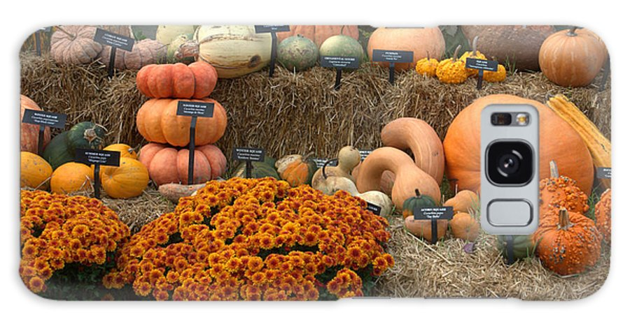 Fall Harvest Galaxy S8 Case featuring the photograph Fruits Of Fall by Mark Holden