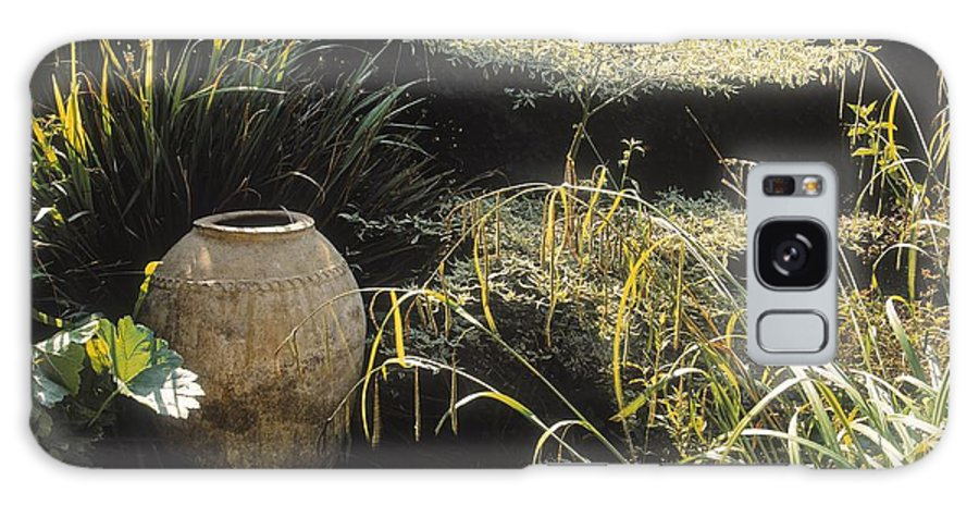 Outdoors Galaxy S8 Case featuring the photograph Garden Urns In A Garden by The Irish Image Collection