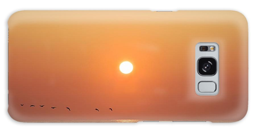 Calm Galaxy S8 Case featuring the photograph Geese Fly By Sunrise Over Irish Sea by Peter McCabe