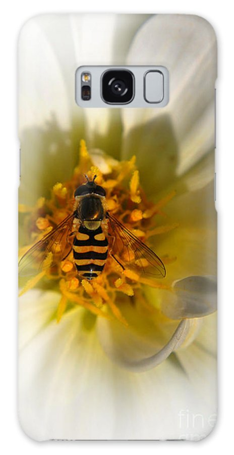 Yhun Suarez Galaxy S8 Case featuring the photograph Get Hover It by Yhun Suarez