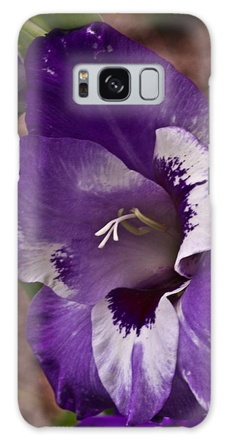 Plant Galaxy S8 Case featuring the photograph Gladiola Blossom 5 by Douglas Barnett