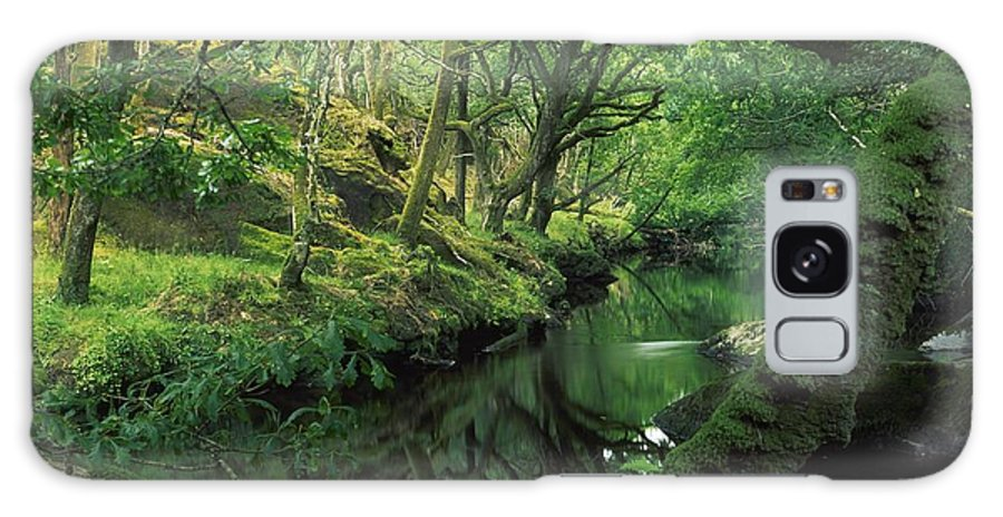 County Cork Galaxy S8 Case featuring the photograph Glengarriff River, County Cork, Ireland by Richard Cummins