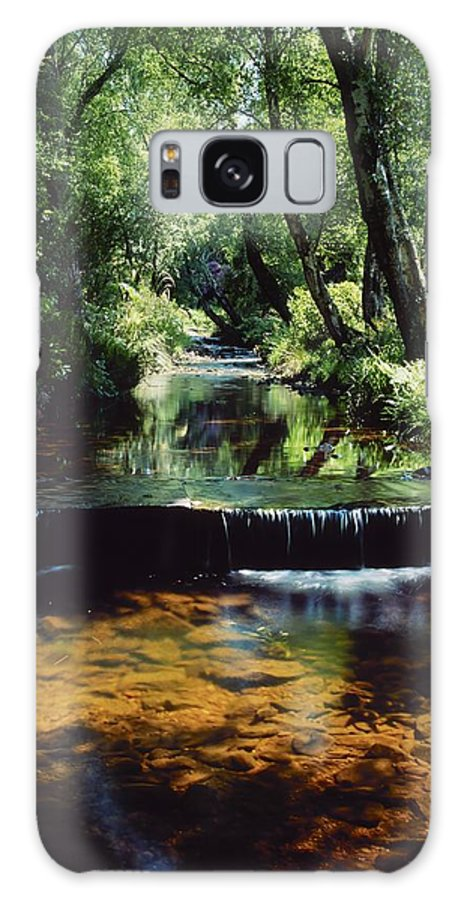 Garden Galaxy S8 Case featuring the photograph Glenleigh Gardens, Co Tipperary by The Irish Image Collection
