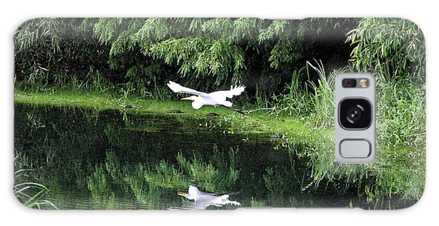 Egret Galaxy S8 Case featuring the photograph Gliding Through The Swamp by Suzanne Gaff
