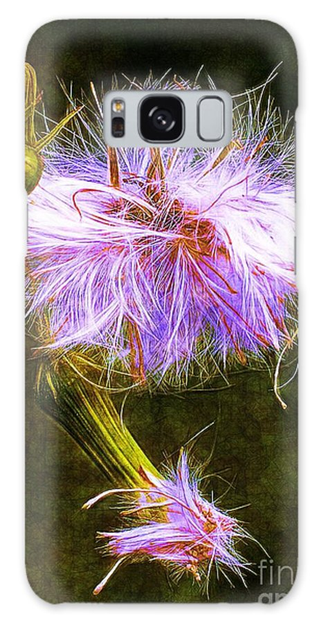 Seed Galaxy S8 Case featuring the photograph Going To Seed by Judi Bagwell