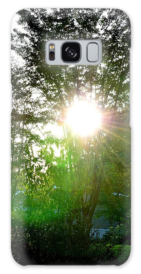 Good Galaxy S8 Case featuring the photograph Good Day Sunshine by Maria Urso