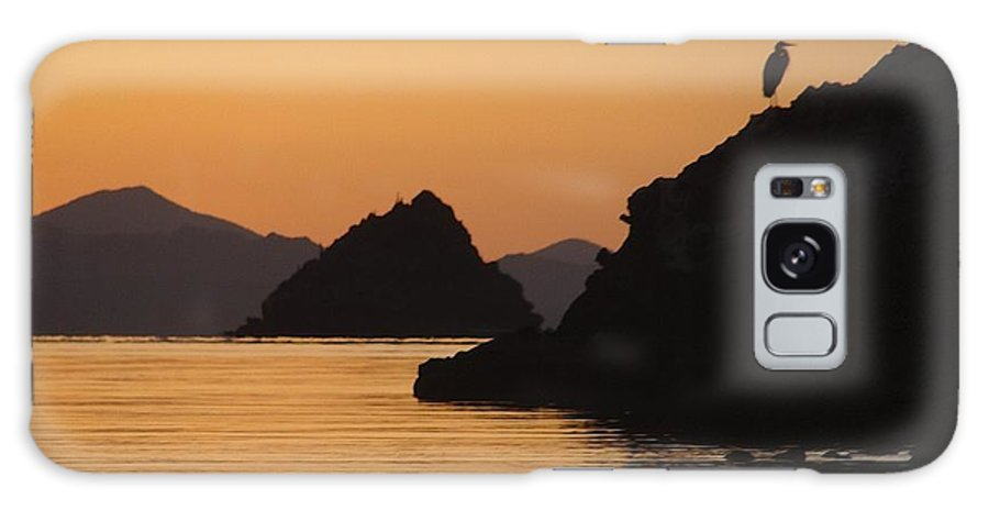 Sunrise Galaxy S8 Case featuring the photograph Good Morning Sunshine by Ramie Liddle