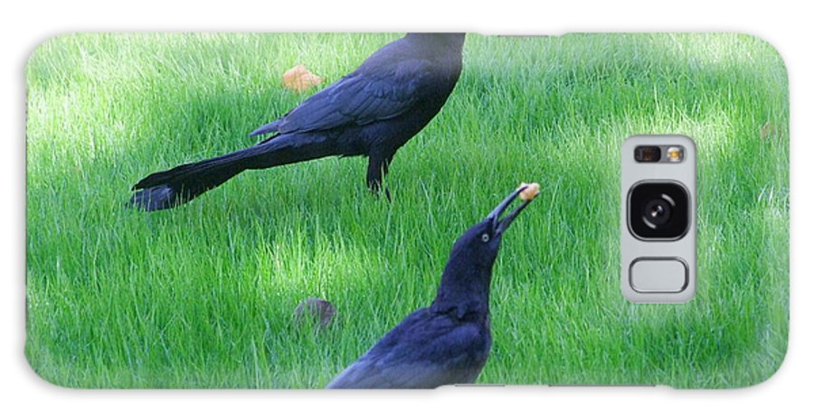 Grackles Galaxy S8 Case featuring the photograph Grackles In The Yard by Mary Deal