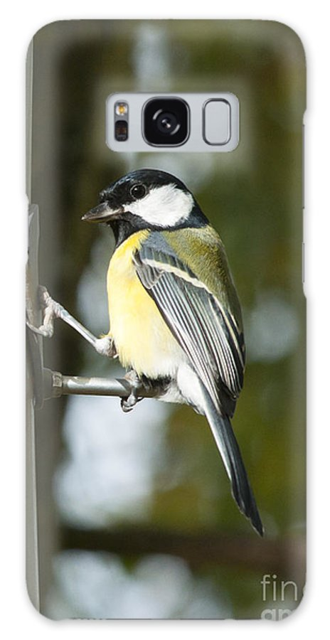 Britain Galaxy S8 Case featuring the photograph Great Tit by Andrew Michael