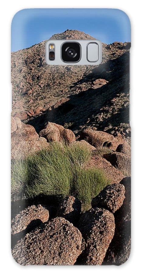 Gold Butte Region Galaxy S8 Case featuring the photograph Green Tuft In Sandstone by Lorraine Devon Wilke