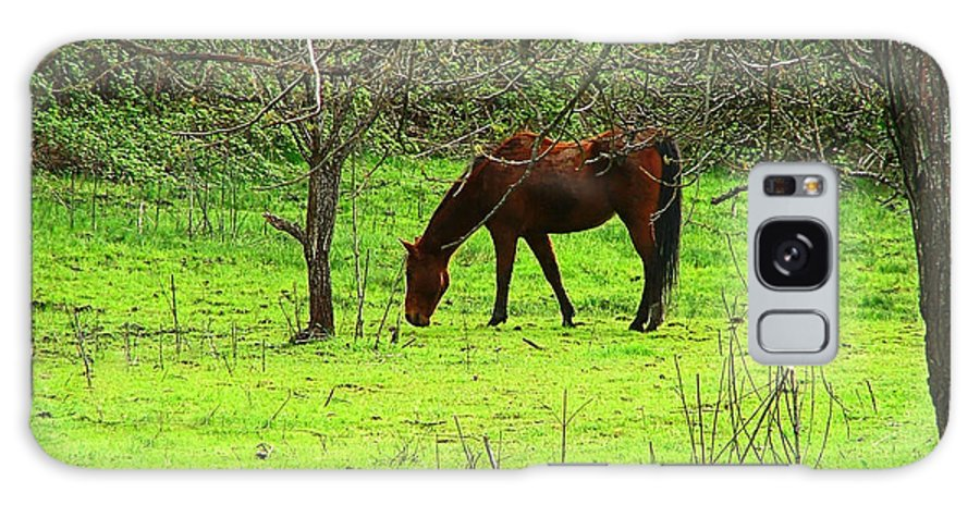 Horse Galaxy S8 Case featuring the photograph Greener Grass by Wendy McKennon