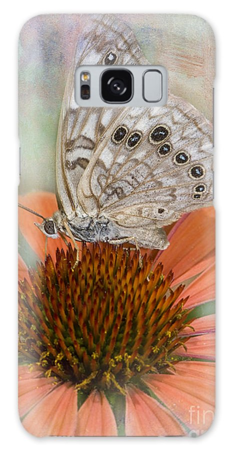 Butterfly Galaxy S8 Case featuring the photograph Hackberry Emplorer Butterfly by Betty LaRue