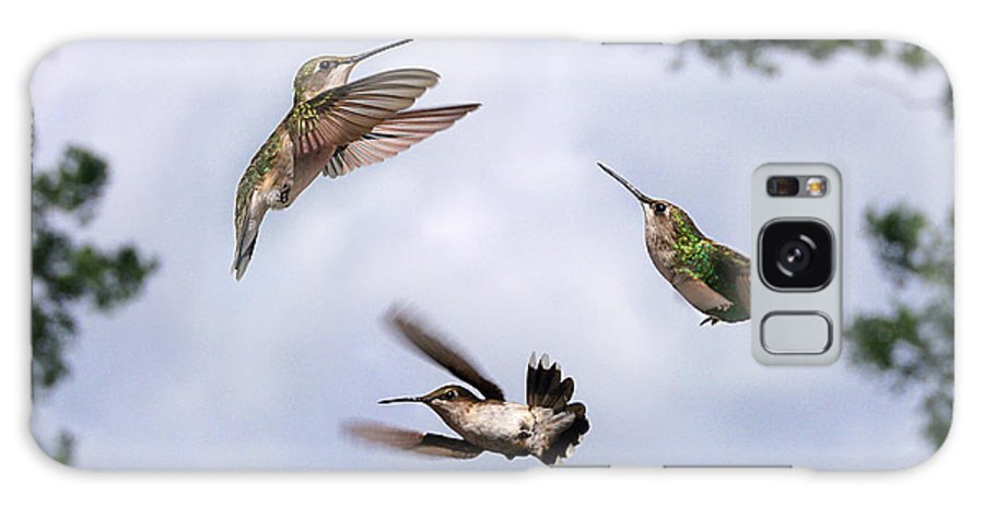 Bird Galaxy S8 Case featuring the photograph Happy Hummer Confluence by Bill Pevlor